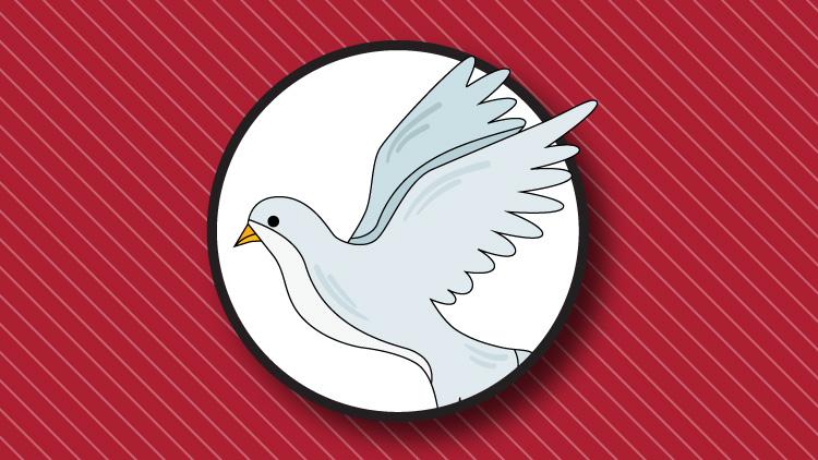 الگویتم کبوتر